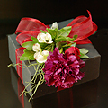 Gift Box carnation-wine120